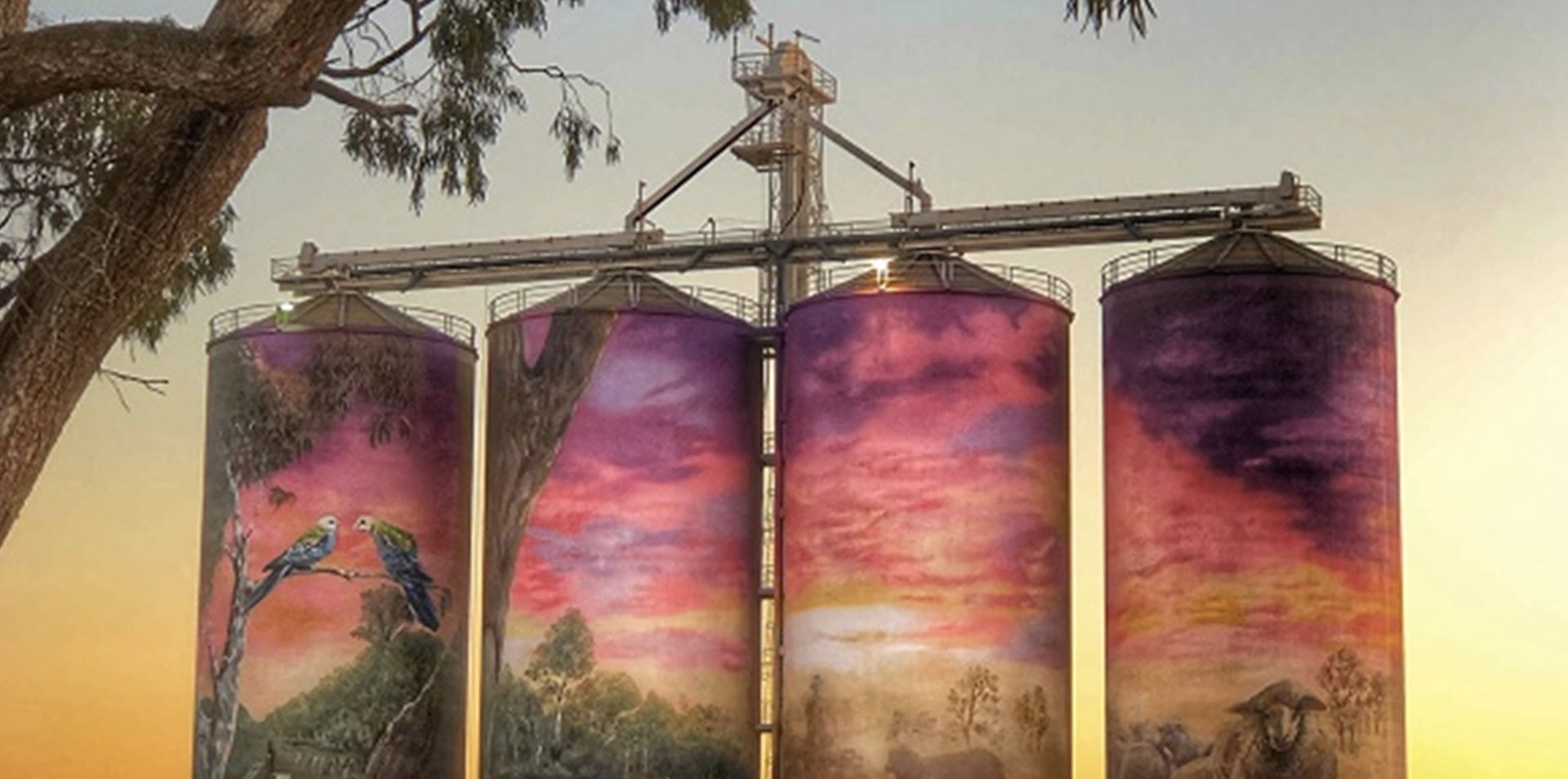 Queensland's Southern Outback & Silo Art Adventure